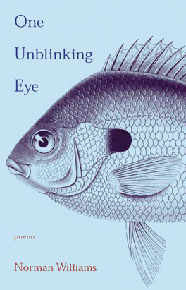 Cover of 'One Unblinking Eye'