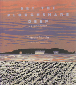 Cover of 'Set the Ploughshare Deep'