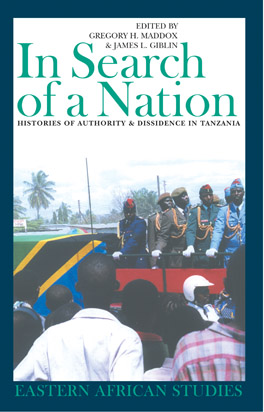 Cover of 'In Search of a Nation'