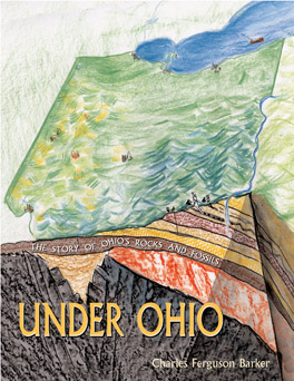 Cover of 'Under Ohio'