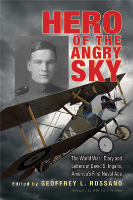 Cover of Hero of the Angry Sky