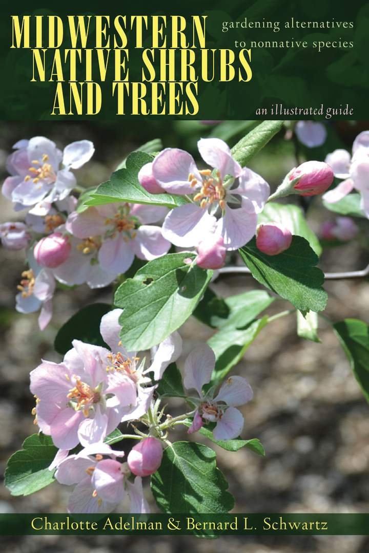 Cover of 'Midwestern Native Shrubs and Trees'