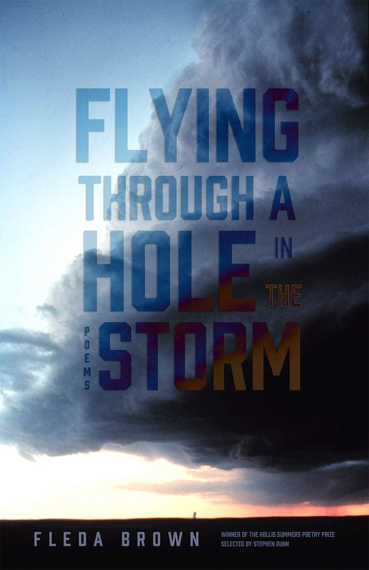 Cover of 'Flying through a Hole in the Storm'