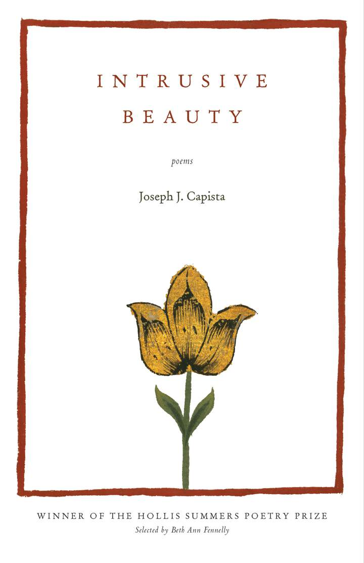 Cover of 'Intrusive Beauty'
